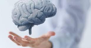 صورة مرض خطير يعود الى فلوريدا ويهدّد بأكل دماغ الانسان وقتله فوراً