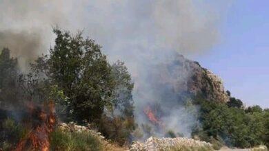 صورة رئيس بلدية شارون: حماية الأحراج من الحرائق مسؤولية أخلاقية ومجتمعية