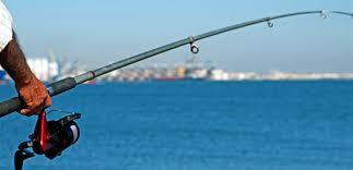 صورة الحركة البيئية دانت الصيد البحري بجاروفة البر