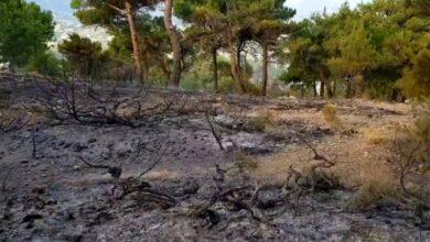 صورة حريق في مكب نفايات بلدية فنيدق