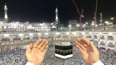 صورة تلزيم الحج لـ«موانئ دبي»: السعودية ترعى التطبيع الإماراتي