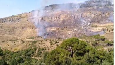صورة بالفيديو- حريق كبير بين بلدات شارون وبدغان والمشرفة.. والبنا يناشد