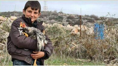 صورة الطفل حسين ودجاجته يرعبان  العدو عند الحدود