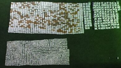 صورة احباط تهريب كمية كبيرة من حشيشة الكيف وحبوب الكبتاغون إلى إحدى الدول الأفريقية