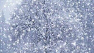 صورة إستعدوا للأمطار والثلوج إبتداءً من مساء الأربعاء