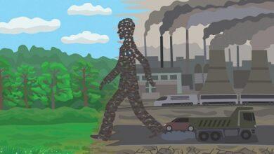صورة ملاحظات في عمق الاقتصاد البيئيّ