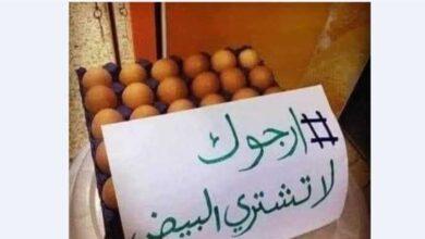 صورة حملة «خليها تفقس» تؤتي ثمارها.. هكذا انخفض سعر البيض