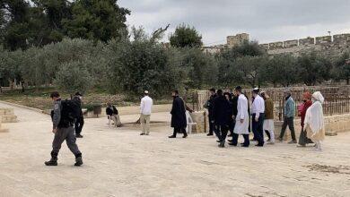 صورة مستوطنون يقتحمون المسجد الأقصى بأعداد كبيرة