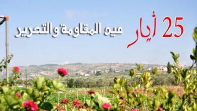 صورة مقاومة لبنان وحصاد عقدين من الانتصارات