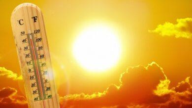 صورة الطقس حار.. وإرتفاع بنسبة الرطوبة