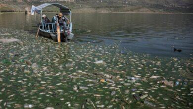 """صورة تحذير من """"كارثة بيئية"""" في لبنان"""