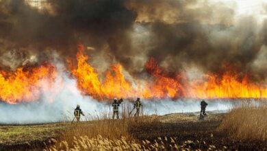 صورة إحتراق 10000 فدان من غابات جنوب غربي يوتا بسبب البرق