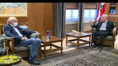 صورة بري عرض مع جنبلاط الاوضاع العامة والملف الحكومي