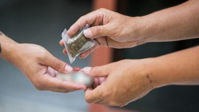 صورة توقيف تاجر وشبكة تروج المخدّرات في جبل لبنان
