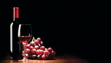 صورة النبيذ اللبناني يشارك في اكسبو 2020 دبي